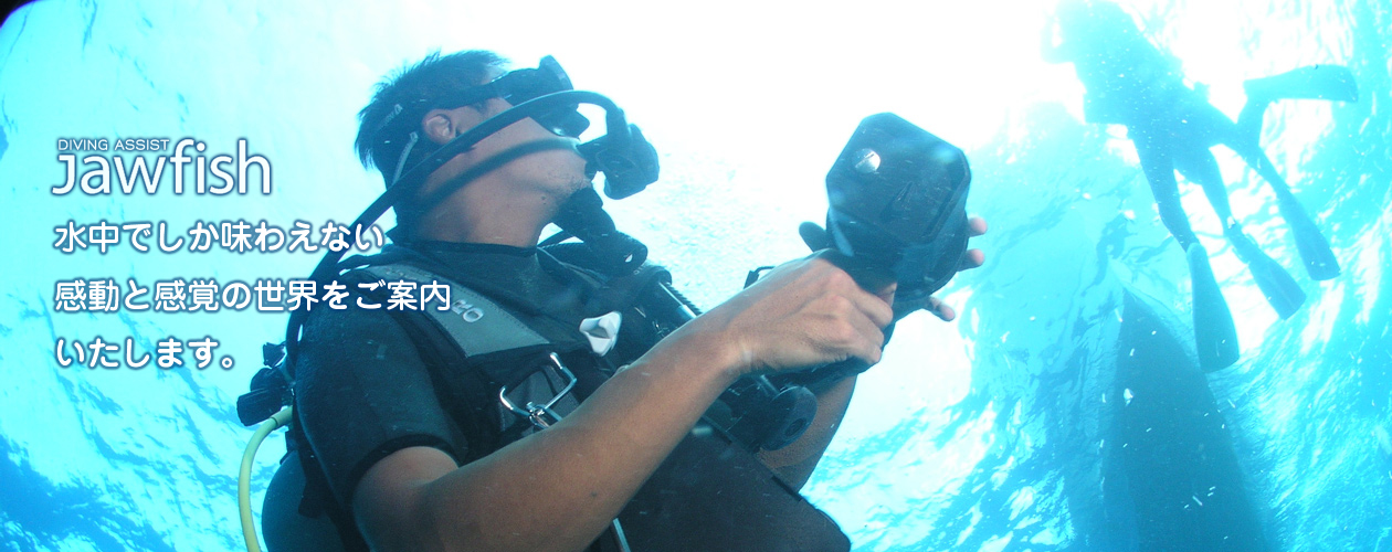 水中でしか味わえない感動と感覚の世界をご案内いたします。